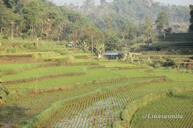 Kampung Walahir Garut