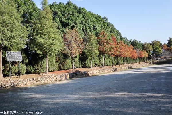 台中新社|新社莊園古堡|歐式建築和花園|好逛好拍|婚紗外拍夯點|新社知名景點