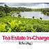 Tea Estate In-Charge   B.Sc. Agriculture Job -2020