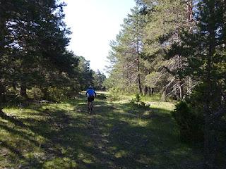 Camino de la Cañadarrilla