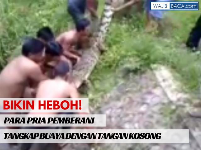 Video : Aksi Penangkapan Buaya Liar oleh Sekelompok Pria Pemberani Hanya dengan Tangan Kosong