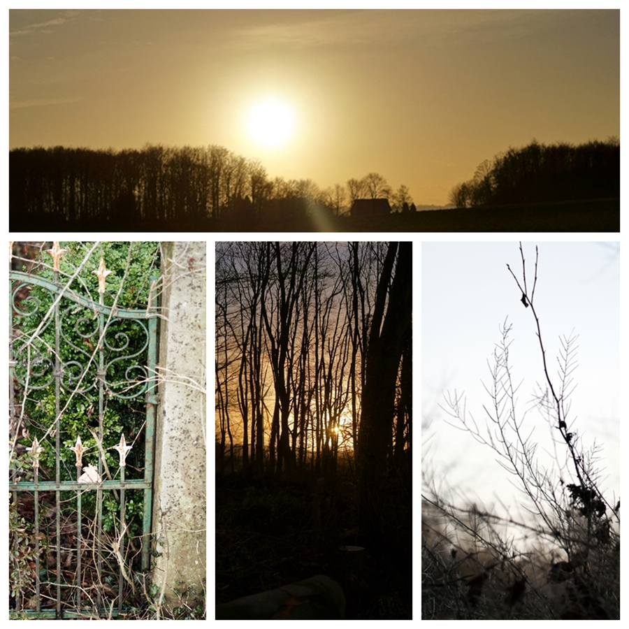 Blog + Fotografie by it's me! - Silvester 2015 - Collage im Gegenlicht