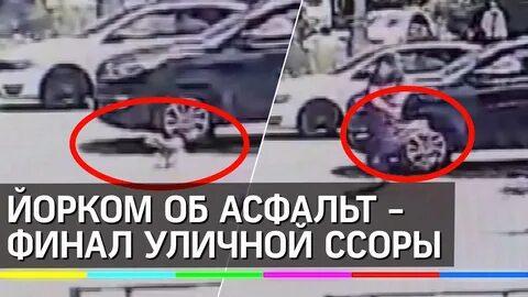Москвичка на улице поссорилась с женщиной и забила до смерти ее собаку