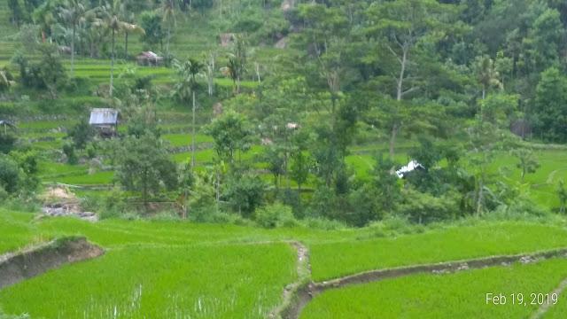 www.levatour.com