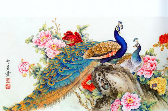 Beautiful Peacock Paintings Trawel India Mails