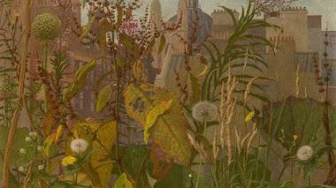 Eliot Hodgkin: flores silvestres en tiempos de guerra