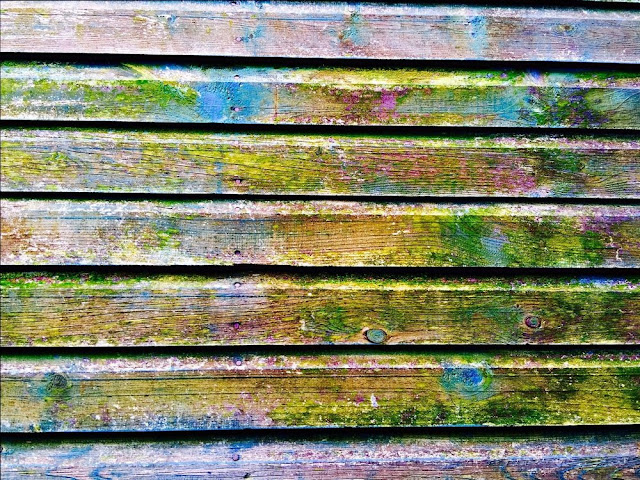 texture legno colorato