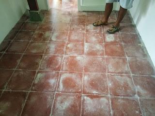 cleaning service bali poles lantai