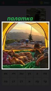 655 слов стоит палатка в которой лежат собаки и лежит мужчина 20 уровень