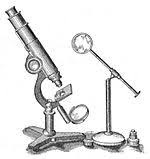 One of the First Microscopes