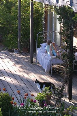 ein schweizer garten die veranda. Black Bedroom Furniture Sets. Home Design Ideas