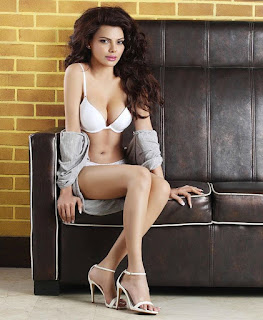 bollywood-actress-sheryln-chopra-latest-hot-photoshoot-hot-&-sexy-photos
