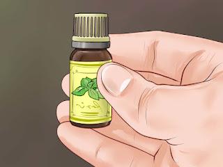 علاج صداع التوتر بالأعشاب