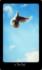 The Fool tarot card image