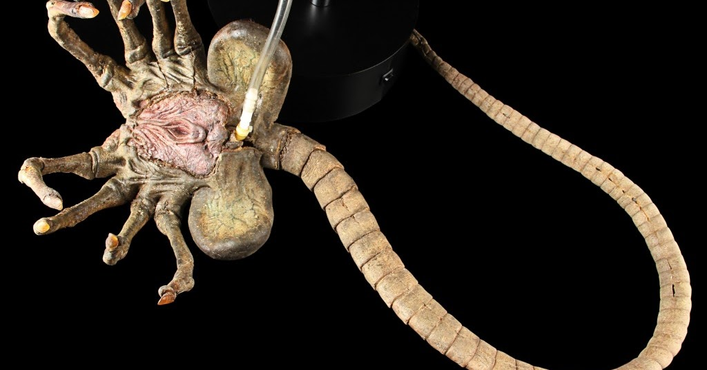 alien vs predator facehugger - photo #34