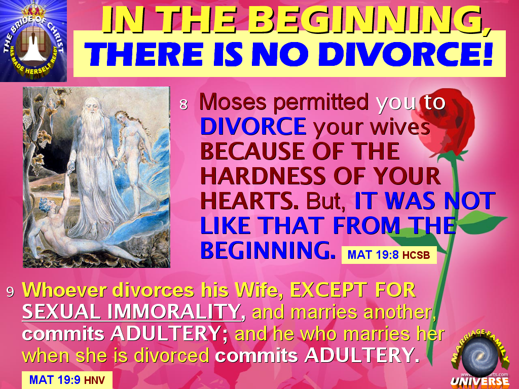 The MARRIAGE AND FAMILY UNIVERSE: WHY DIVORCE? SHOULD YOU