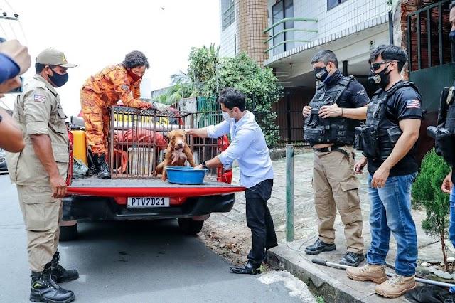 Após denúncias, Duarte, Corpo de Bombeiros e Polícia Civil resgatam cão abandonado