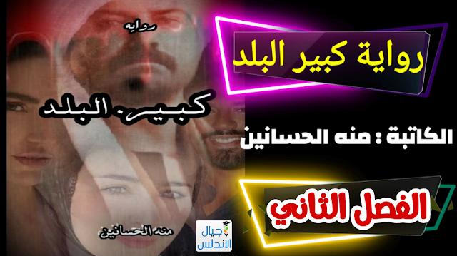 رواية كبير البلد للكاتبه منه الحسانين - الفصل الثاني