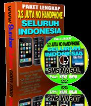 Data handphone