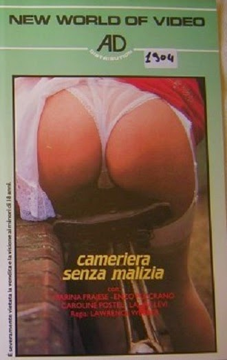 Cameriera senza… malizia (1980)