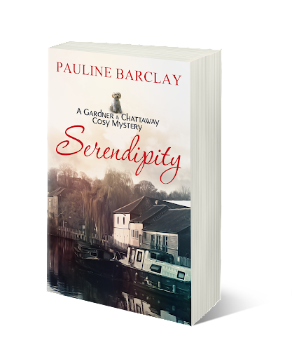 Serendipity - now published