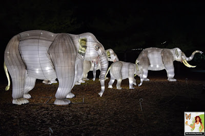 Illuminated Herd of Elephants Bronx Zoo Holiday of Lights 2019