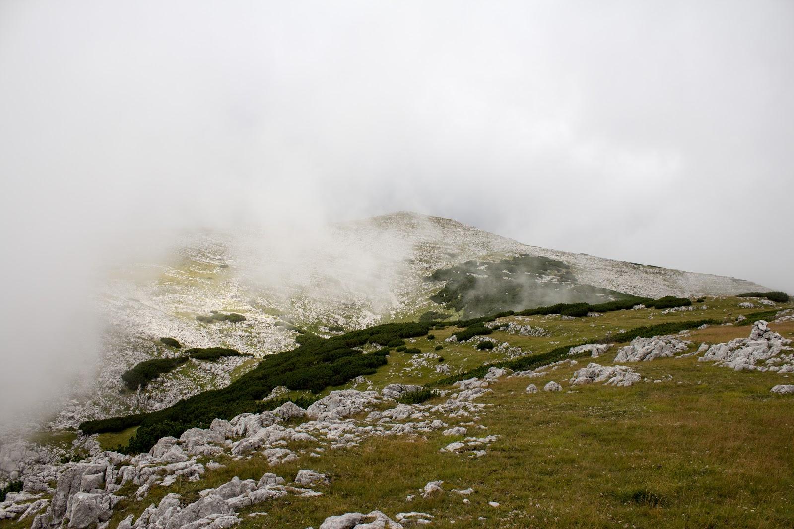 Wanderung von der Hintereggeralm bei Liezen zum Nazogl, Angerkogel und Kosennspitz. - Nazogl im Nebel