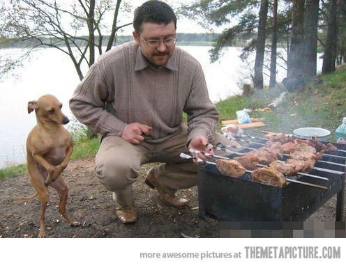 please sir i would like some bbq too