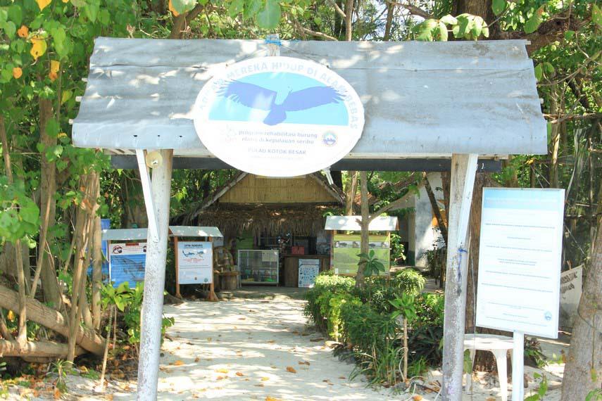 Wisata Pulau Kotok di Kepulauan Seribu Jakarta