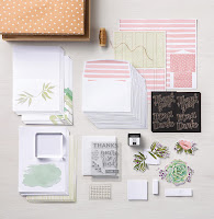 https://www.stampinup.com/ECWeb/product/148266/notes-of-kindness-card-kit?dbwsdemoid=80380