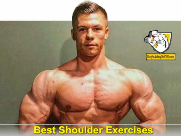 There are many shoulder exercises available for the individual interested in strengthening the shoulder muscles and building tone