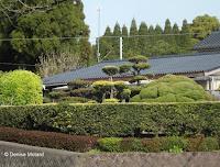 Typical house landscaping, Kagoshima, Japan