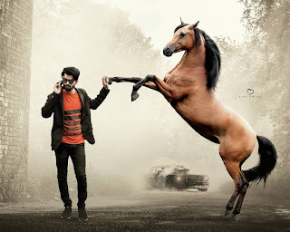 Horse Concept Photo Editing Background And Png Download