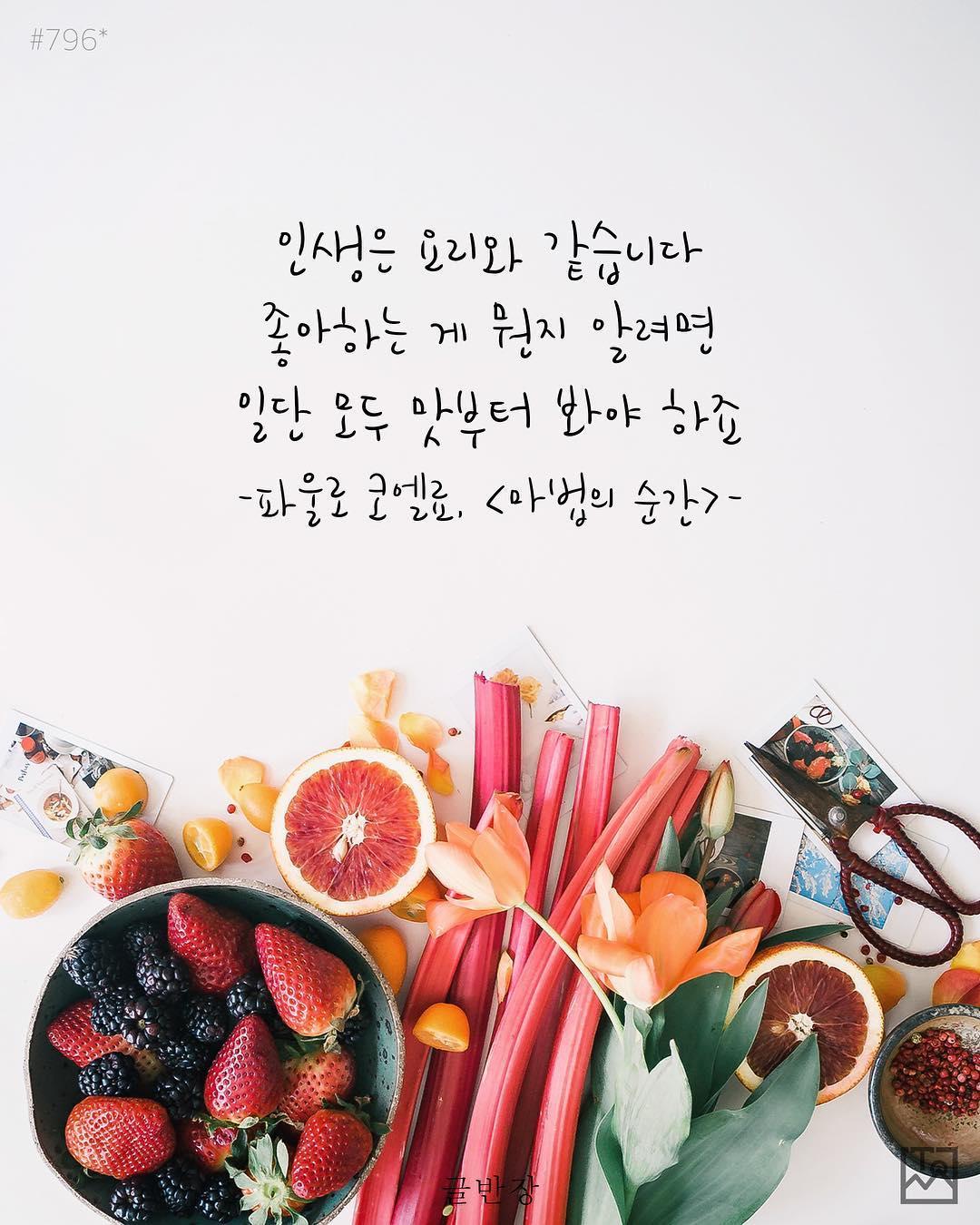 인생은 요리와 같습니다 - 파울로 코엘료(Paulo Coelho), <마법의 순간>