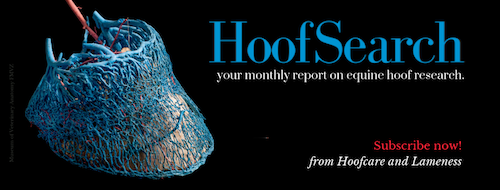 HoofSearch ad