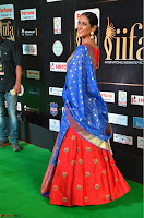 Priya Shree in Beautiful Blue Saree at IIFA Utsavam Awards 2017  Day 2    HD Exclusive Pics 12.JPG