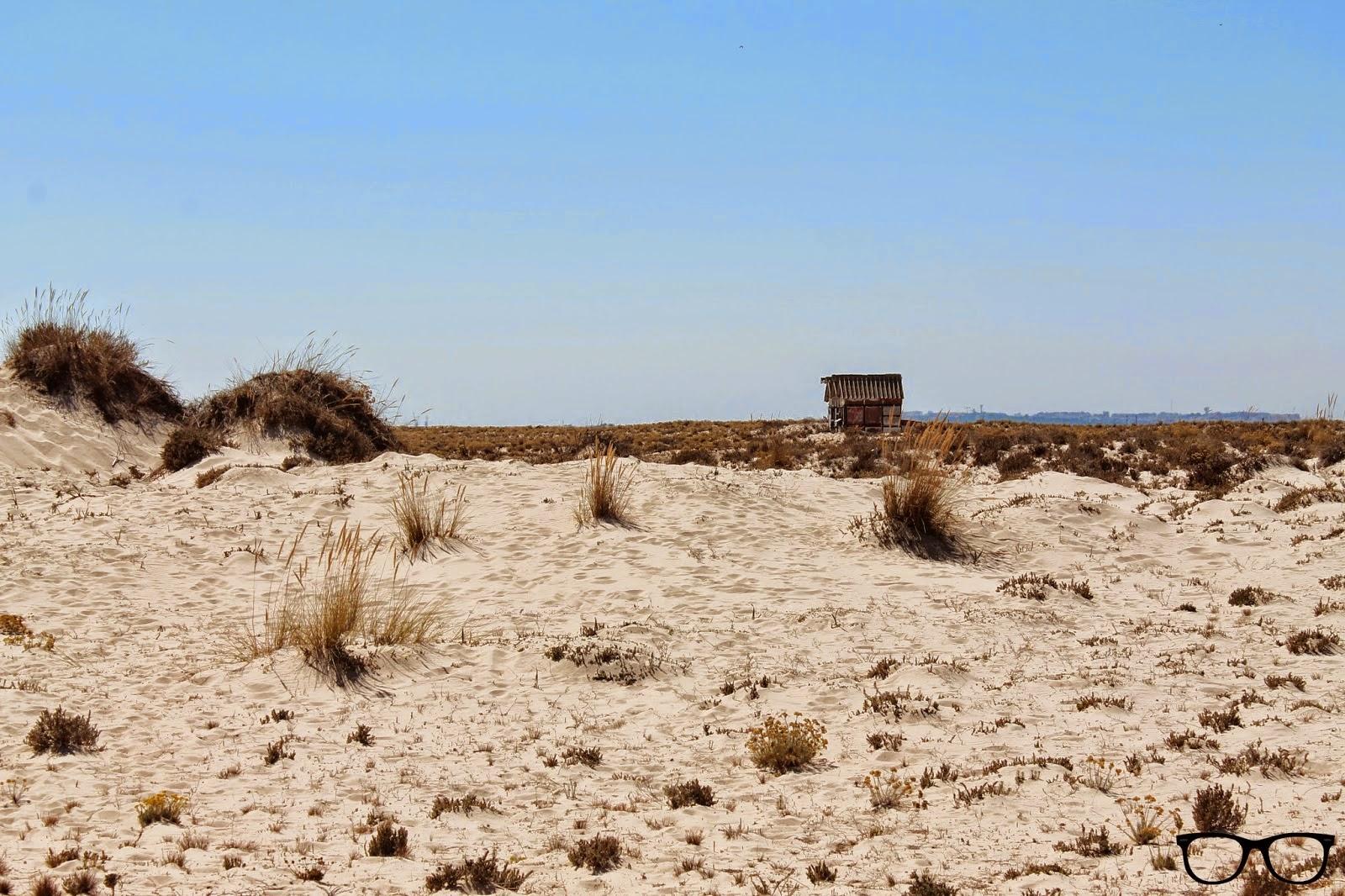 Casa playa Isla de Armona