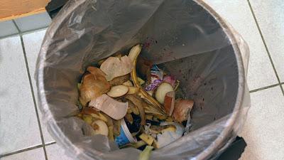 sampah organik, sampah dapur, bau sampah, masalah sampah,