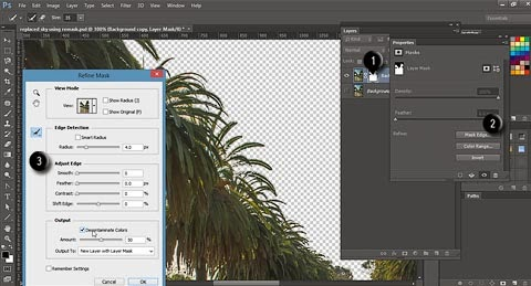 Use Refine Mask dialog to additionally improve mask created in Topaz ReMask