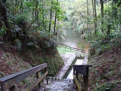 Parque Natural Municipal Nascentes de Paranapiacaba - Tanque do Gustavo