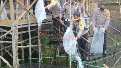 Persiapan Ketahanan Pangan, Polres Tapin Tabur Bibit Ikan