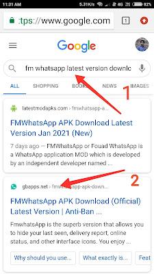 fm whatsapp downlod