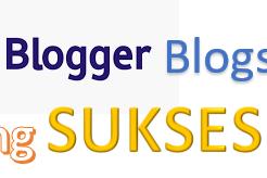 Blogger Sukses Hanya Dengan Blogspot