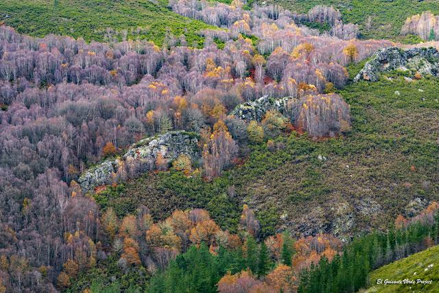Oscos, otoño - Asturias