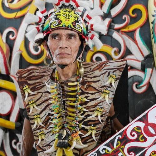 Tinuku Traavel Pampang village, an indigenous Dayak Apokayan and Kenyah around Lamin house for cultural performances