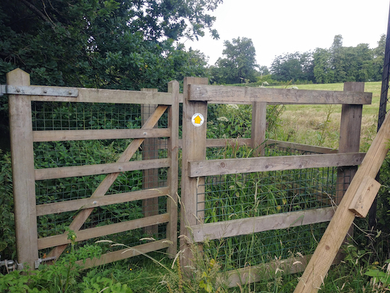The path beyond the gate mentioned below in point 22 goes to the right of the bush  Image by Hertfordshire Walker released under Creative Commons BY-NC-SA 4.0