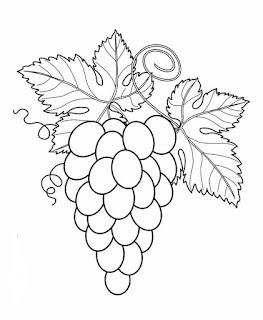 menggambar buah anggur