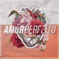Baixar Amor Perfeito - Maiara e Fernando Mp3