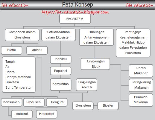 Komponen Dalam Ekosistem Alsen Saloka Blog S