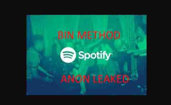Spotify 1 Year Bin